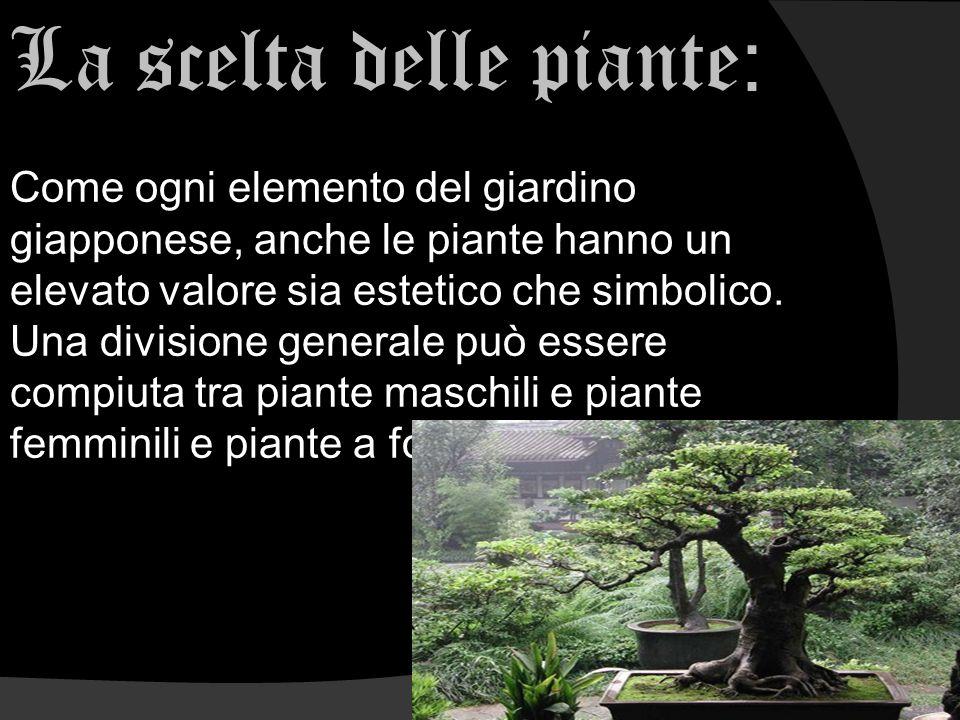 La scelta delle piante:
