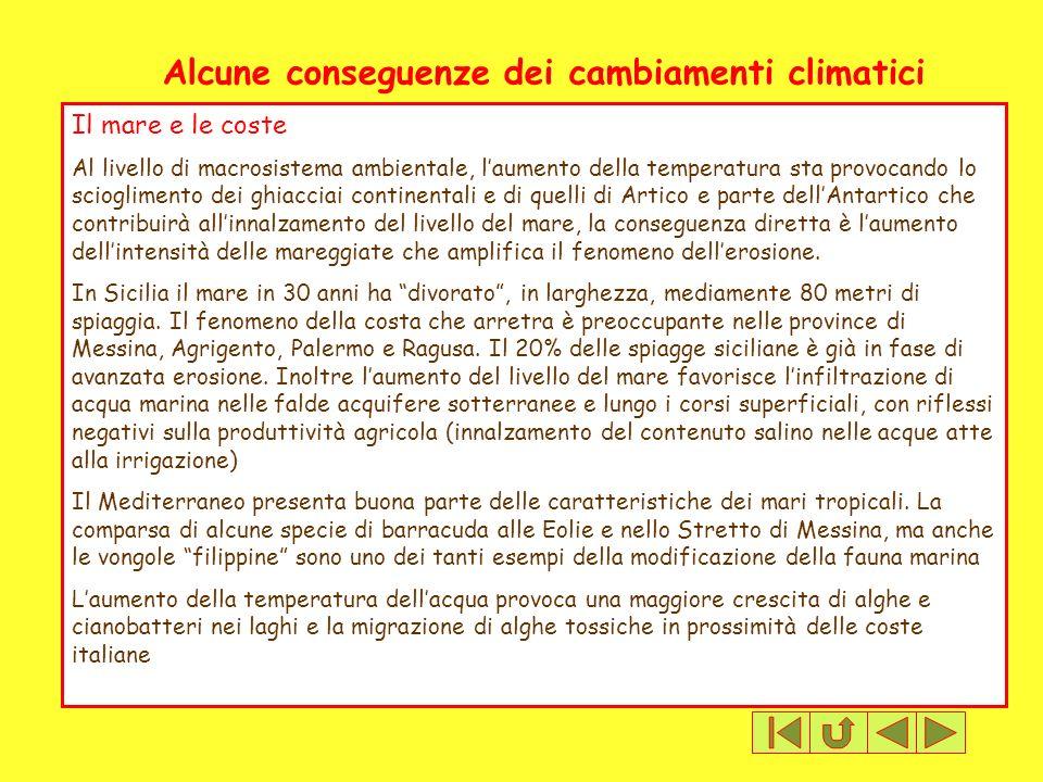 Alcune conseguenze dei cambiamenti climatici