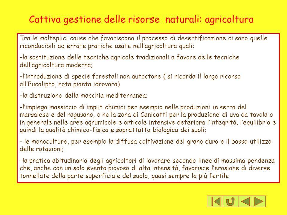 Cattiva gestione delle risorse naturali: agricoltura