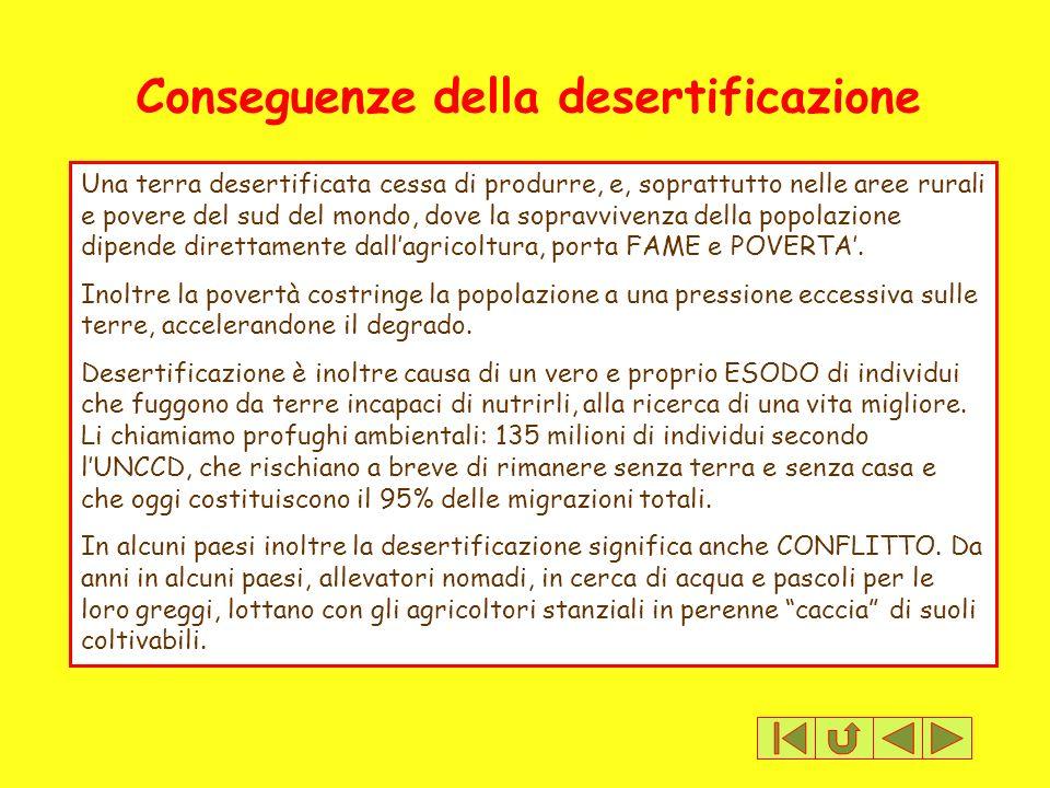 Conseguenze della desertificazione