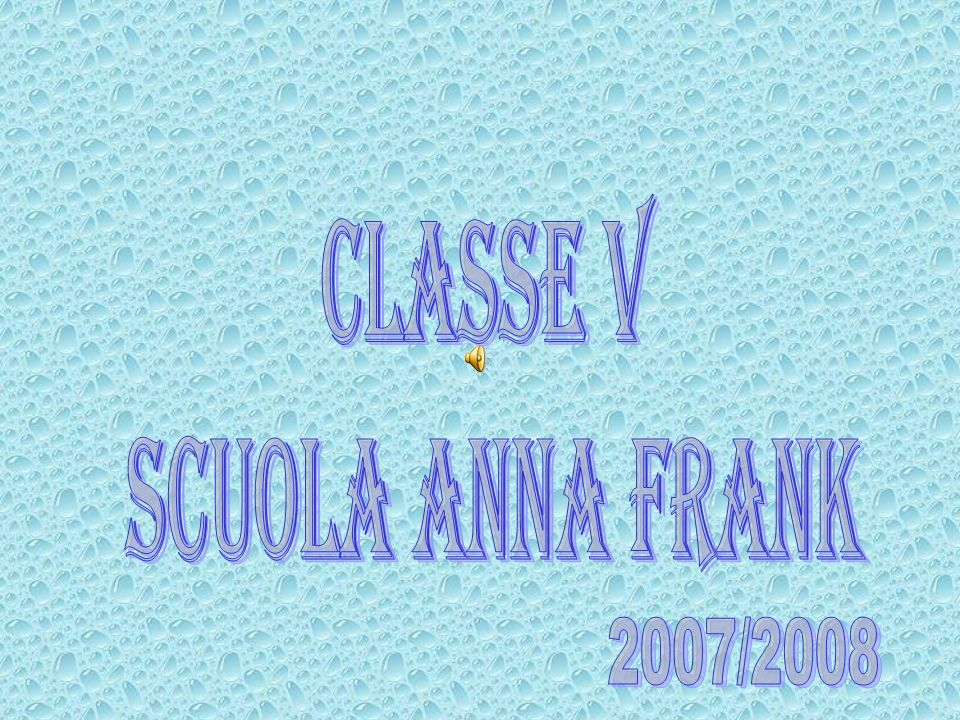 classe V scuola Anna Frank 2007/2008