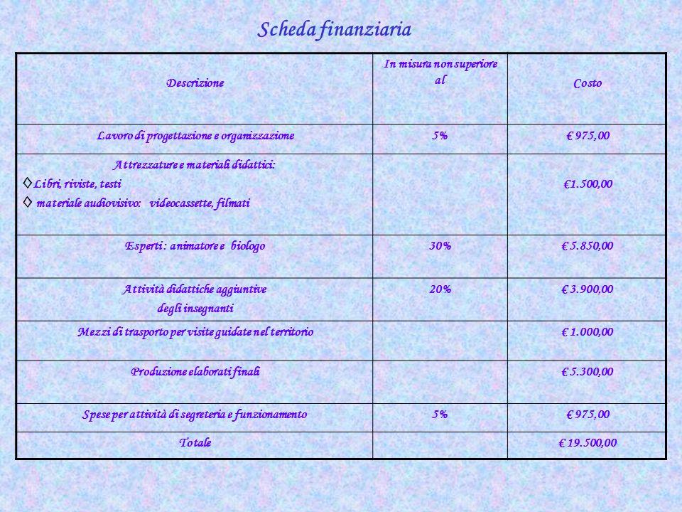 Scheda finanziaria Descrizione In misura non superiore al Costo