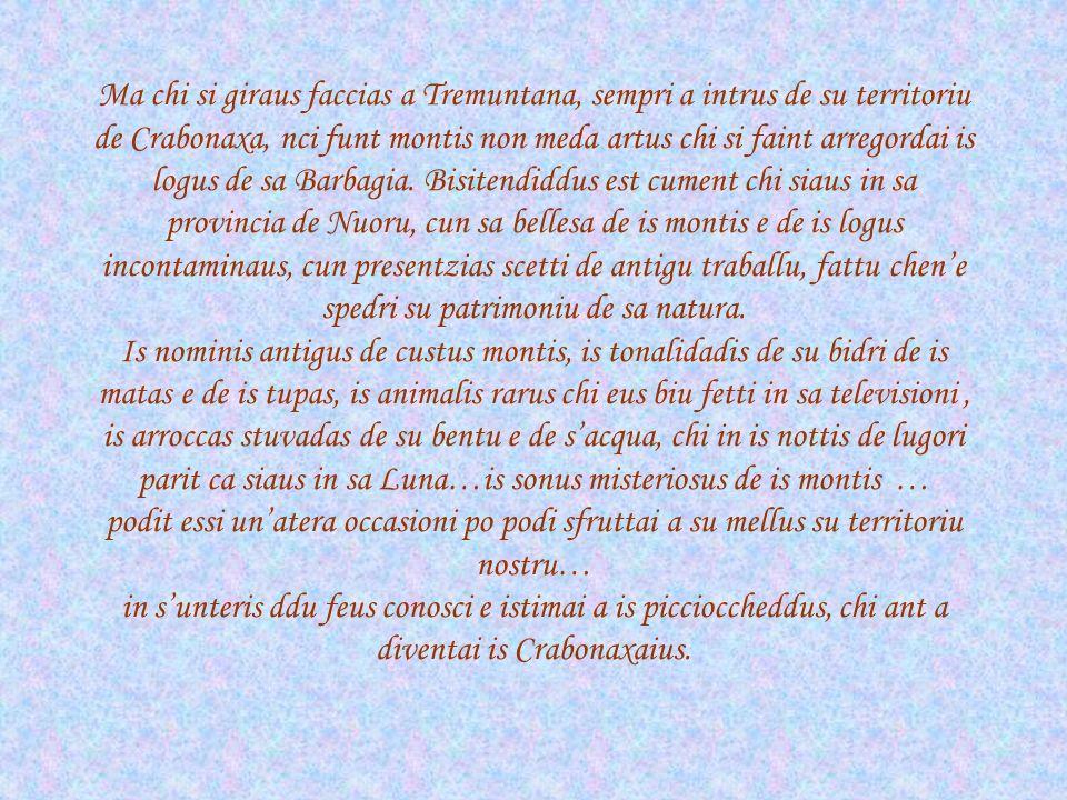 Ma chi si giraus faccias a Tremuntana, sempri a intrus de su territoriu de Crabonaxa, nci funt montis non meda artus chi si faint arregordai is logus de sa Barbagia.