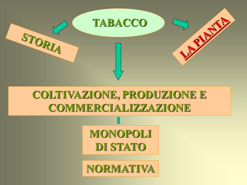 COLTIVAZIONE, PRODUZIONE E COMMERCIALIZZAZIONE