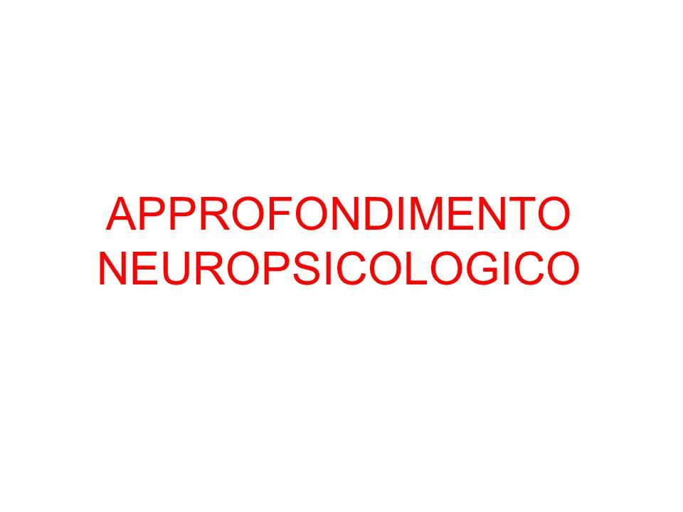 APPROFONDIMENTO NEUROPSICOLOGICO