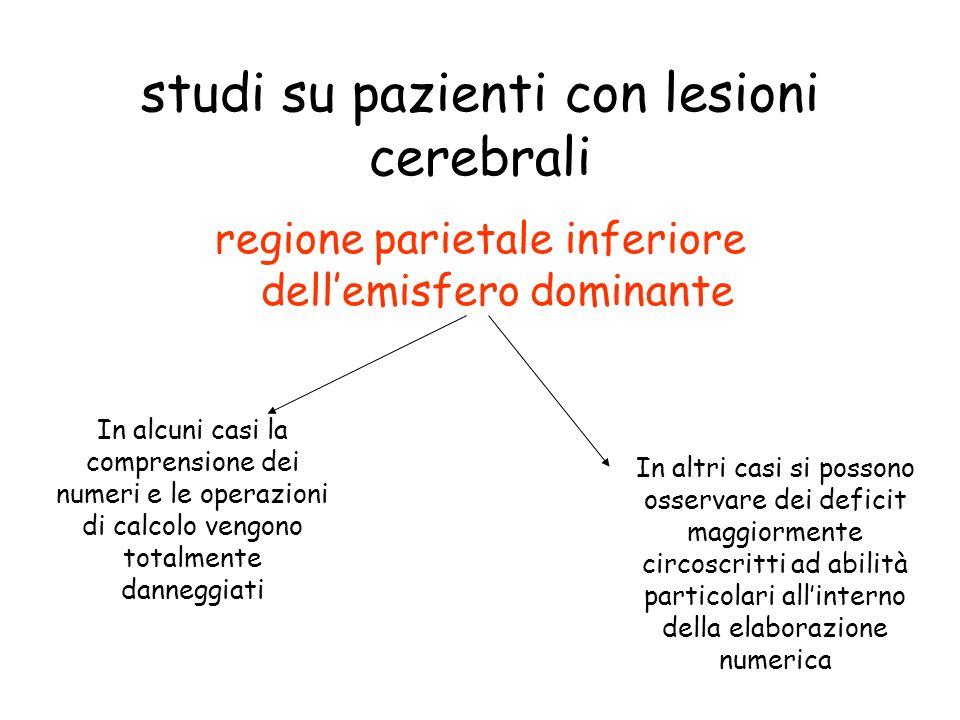 studi su pazienti con lesioni cerebrali