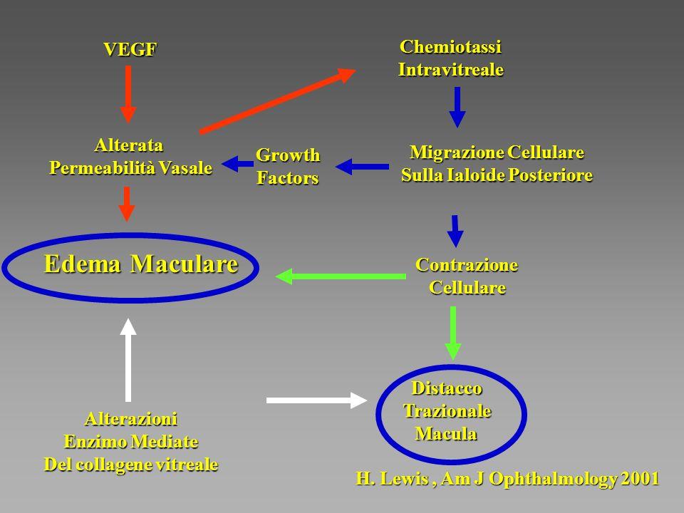Edema Maculare Chemiotassi Intravitreale VEGF Alterata
