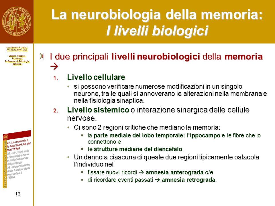 La neurobiologia della memoria: I livelli biologici