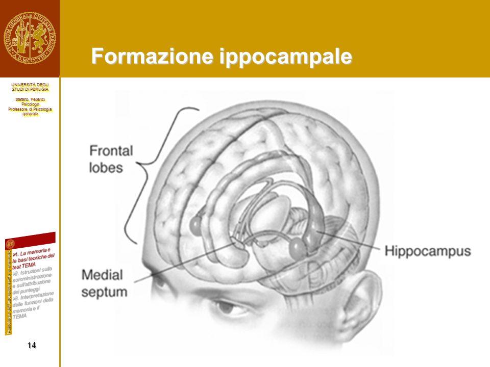 Formazione ippocampale