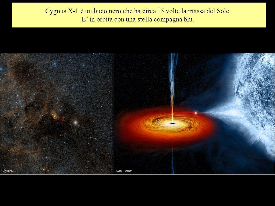 Cygnus X-1 è un buco nero che ha circa 15 volte la massa del Sole.