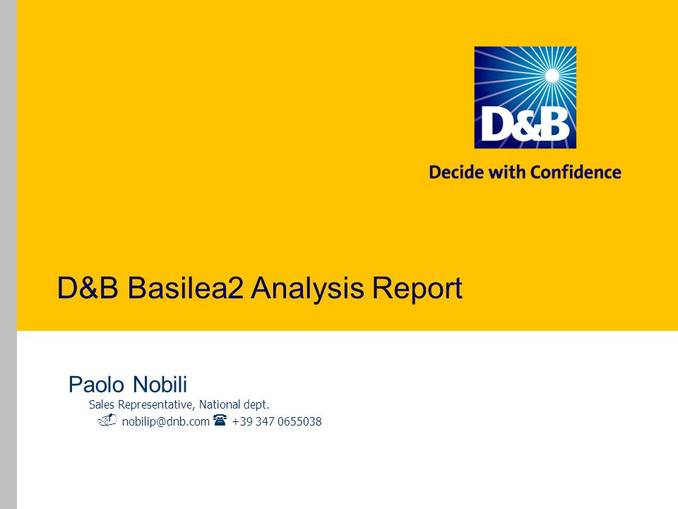 D&B Basilea2 Analysis Report