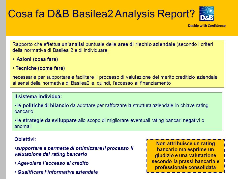Cosa fa D&B Basilea2 Analysis Report