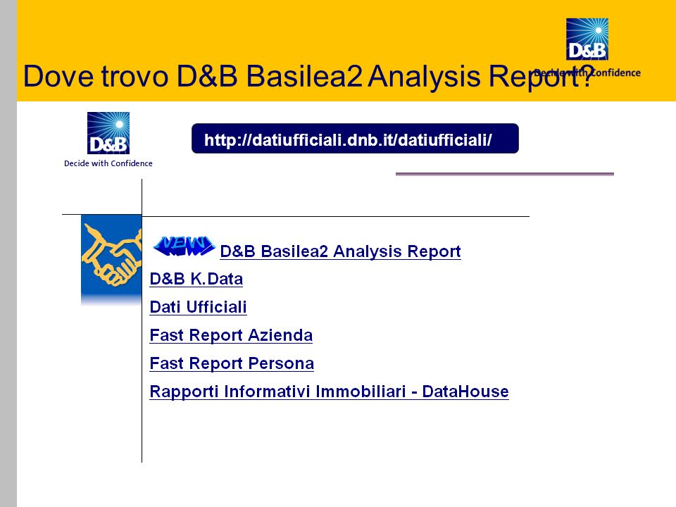 Dove trovo D&B Basilea2 Analysis Report