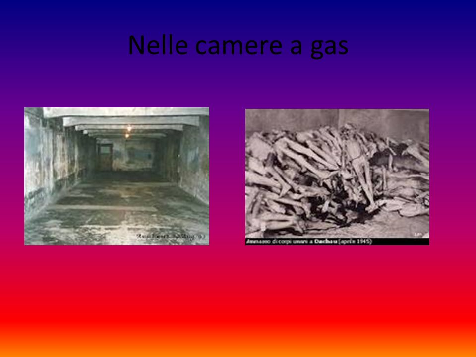 Nelle camere a gas