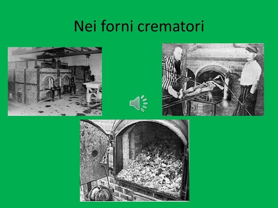 Nei forni crematori