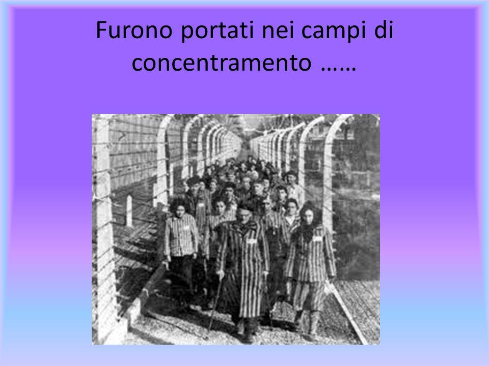 Furono portati nei campi di concentramento ……