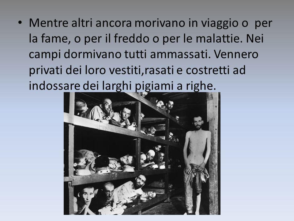 Mentre altri ancora morivano in viaggio o per la fame, o per il freddo o per le malattie.