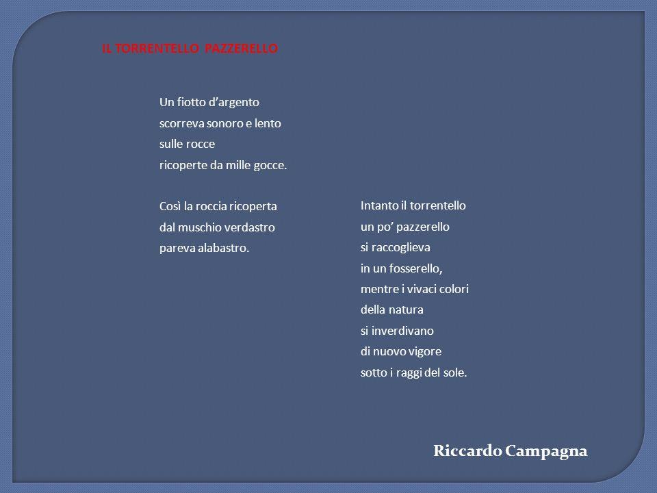 Riccardo Campagna IL TORRENTELLO PAZZERELLO Un fiotto d'argento