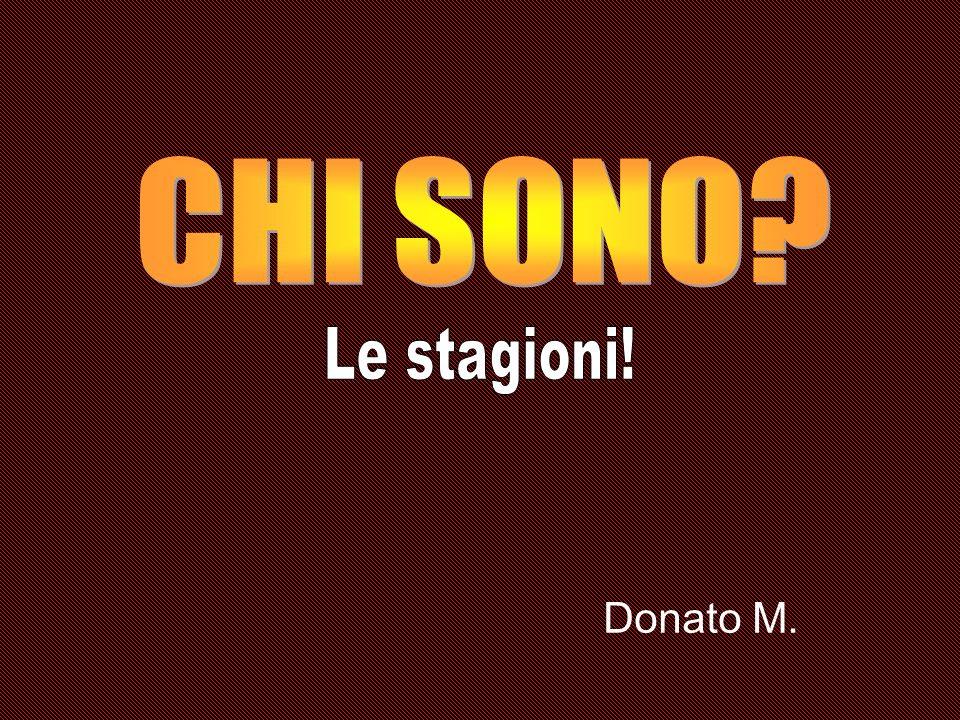 CHI SONO Le stagioni! Donato M.
