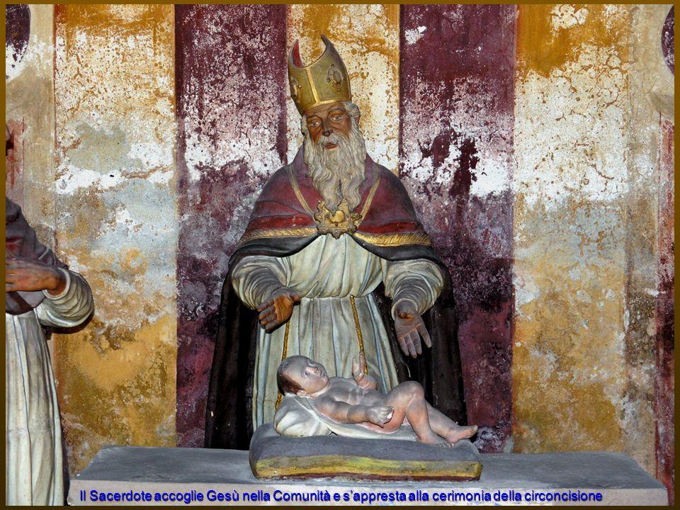 Il Sacerdote accoglie Gesù nella Comunità e s'appresta alla cerimonia della circoncisione