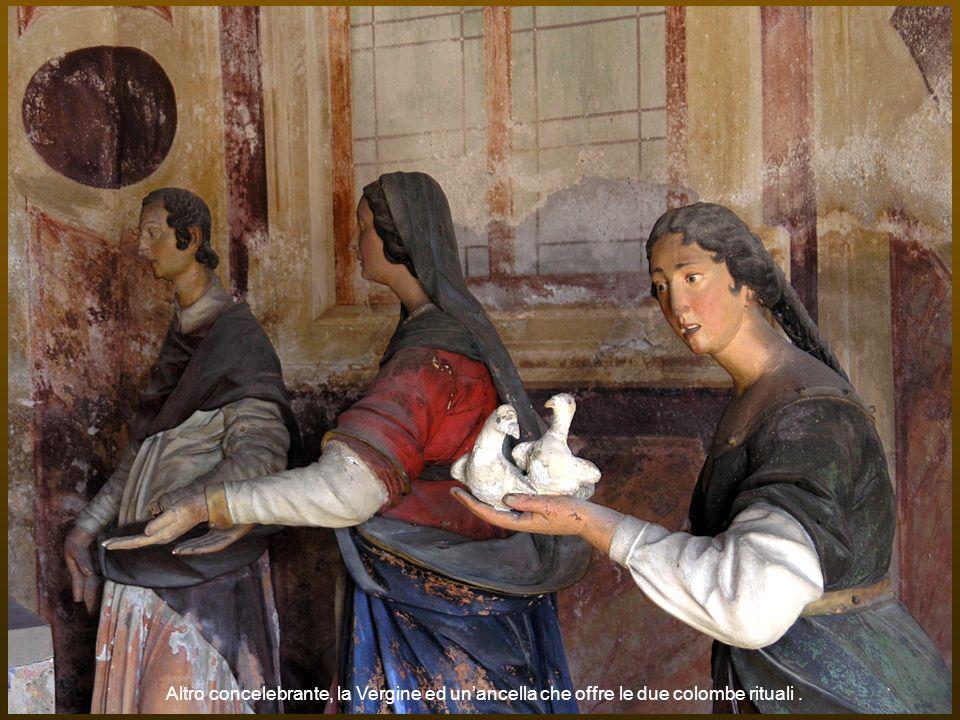 Altro concelebrante, la Vergine ed un'ancella che offre le due colombe rituali .