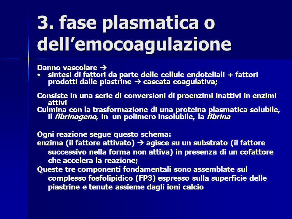 3. fase plasmatica o dell'emocoagulazione