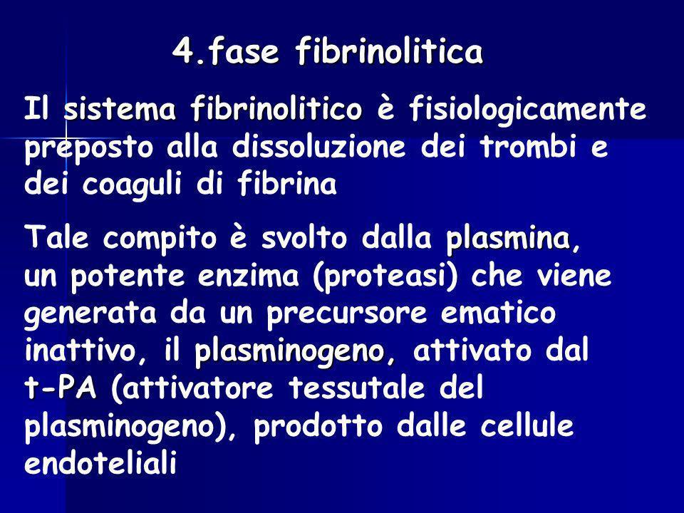4.fase fibrinolitica Il sistema fibrinolitico è fisiologicamente preposto alla dissoluzione dei trombi e dei coaguli di fibrina.
