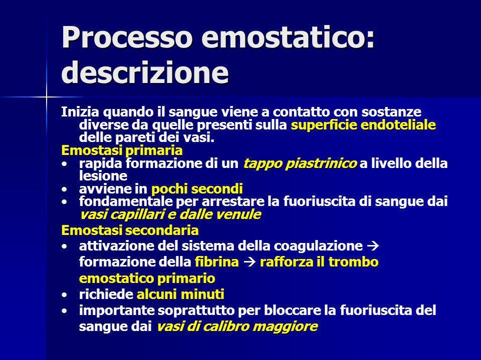 Processo emostatico: descrizione