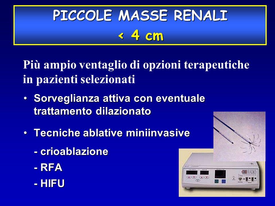 PICCOLE MASSE RENALI < 4 cm