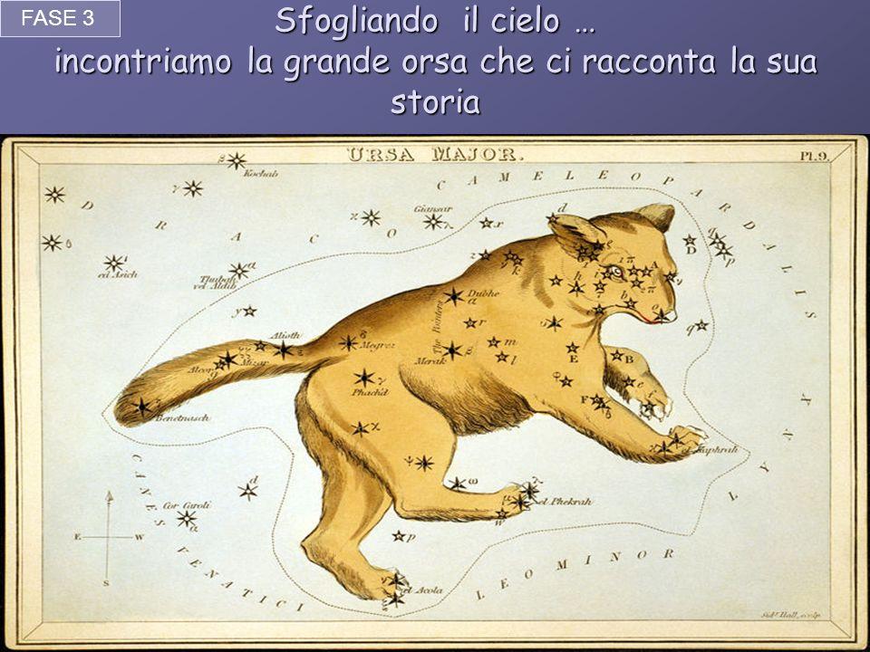 FASE 3 Sfogliando il cielo … incontriamo la grande orsa che ci racconta la sua storia