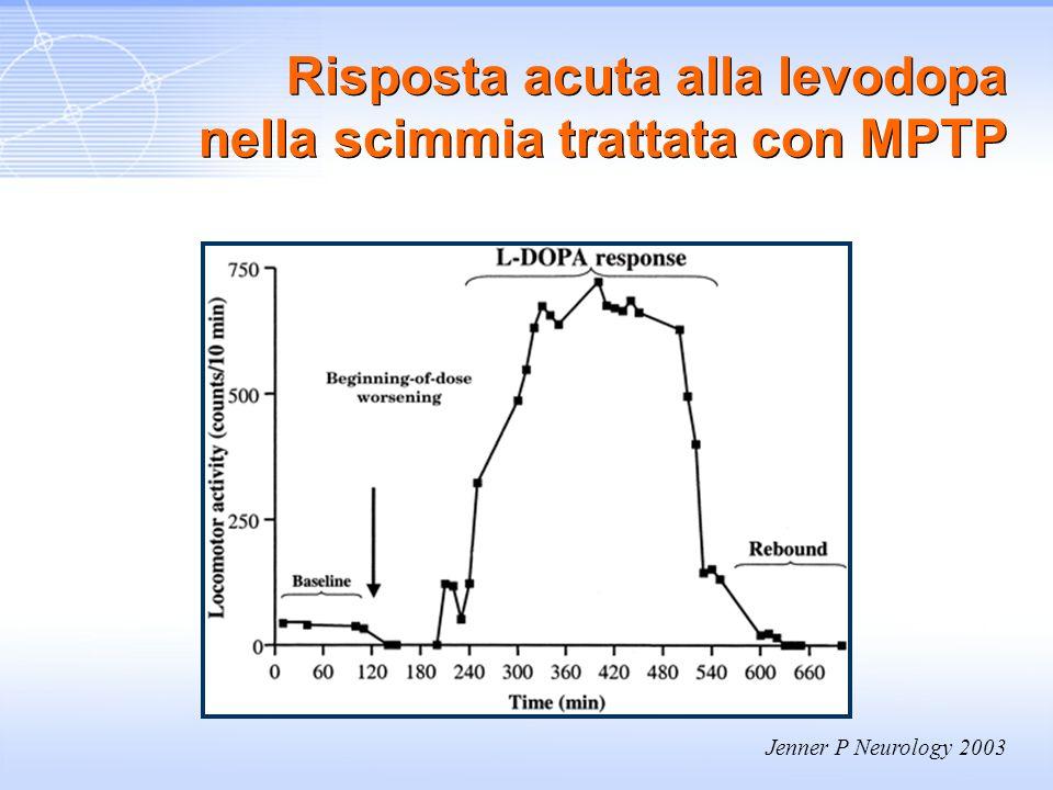Risposta acuta alla levodopa nella scimmia trattata con MPTP