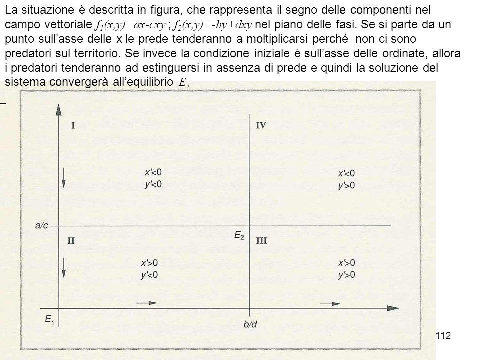 La situazione è descritta in figura, che rappresenta il segno delle componenti nel campo vettoriale f1(x,y)=ax-cxy ; f2(x,y)=-by+dxy nel piano delle fasi.