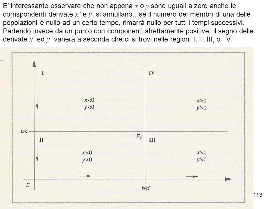 E' interessante osservare che non appena x o y sono uguali a zero anche le corrispondenti derivate x' e y' si annullano;: se il numero dei membri di una delle popolazioni è nullo ad un certo tempo, rimarrà nullo per tutti i tempi successivi.