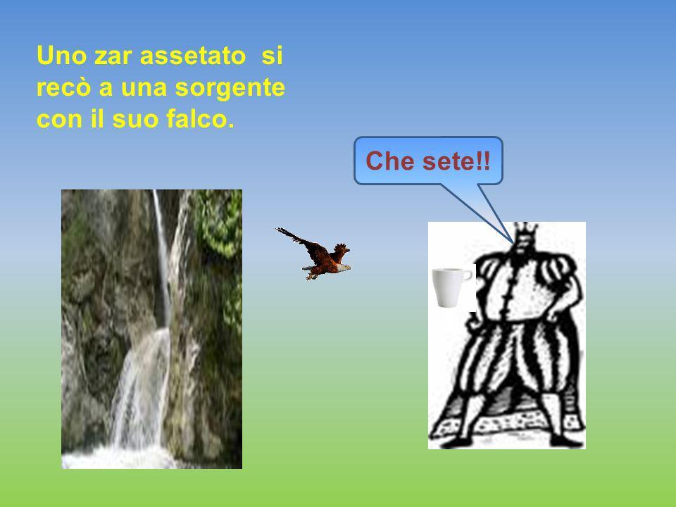 Uno zar assetato si recò a una sorgente con il suo falco.