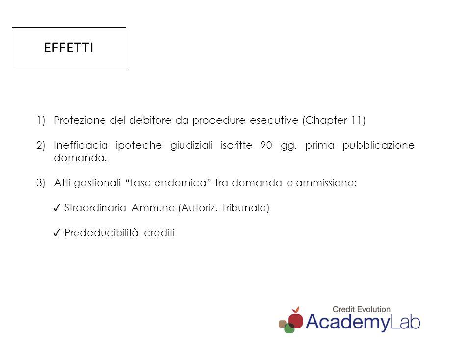 EFFETTI Protezione del debitore da procedure esecutive (Chapter 11)