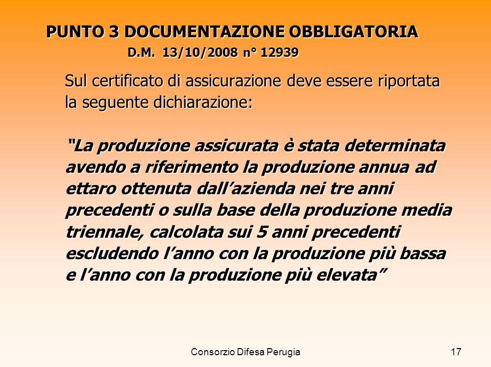 PUNTO 3 DOCUMENTAZIONE OBBLIGATORIA D.M. 13/10/2008 n° 12939
