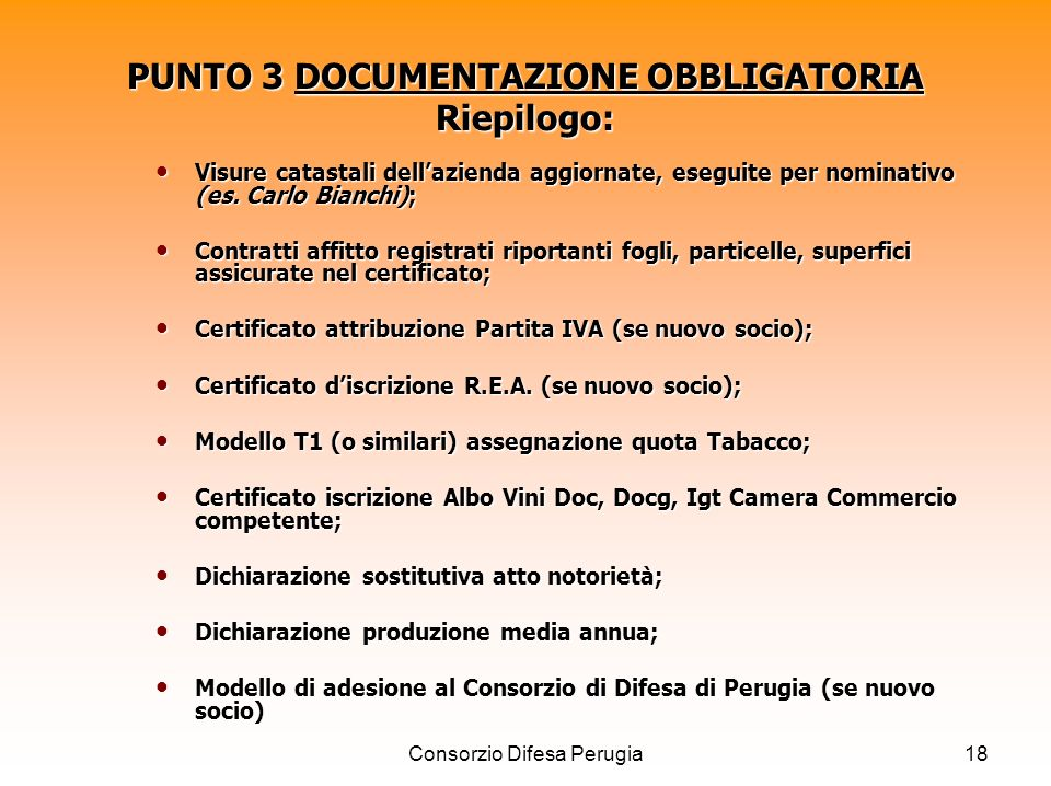 PUNTO 3 DOCUMENTAZIONE OBBLIGATORIA Riepilogo: