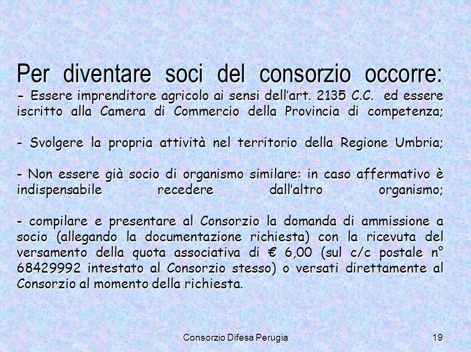 Consorzio Difesa Perugia