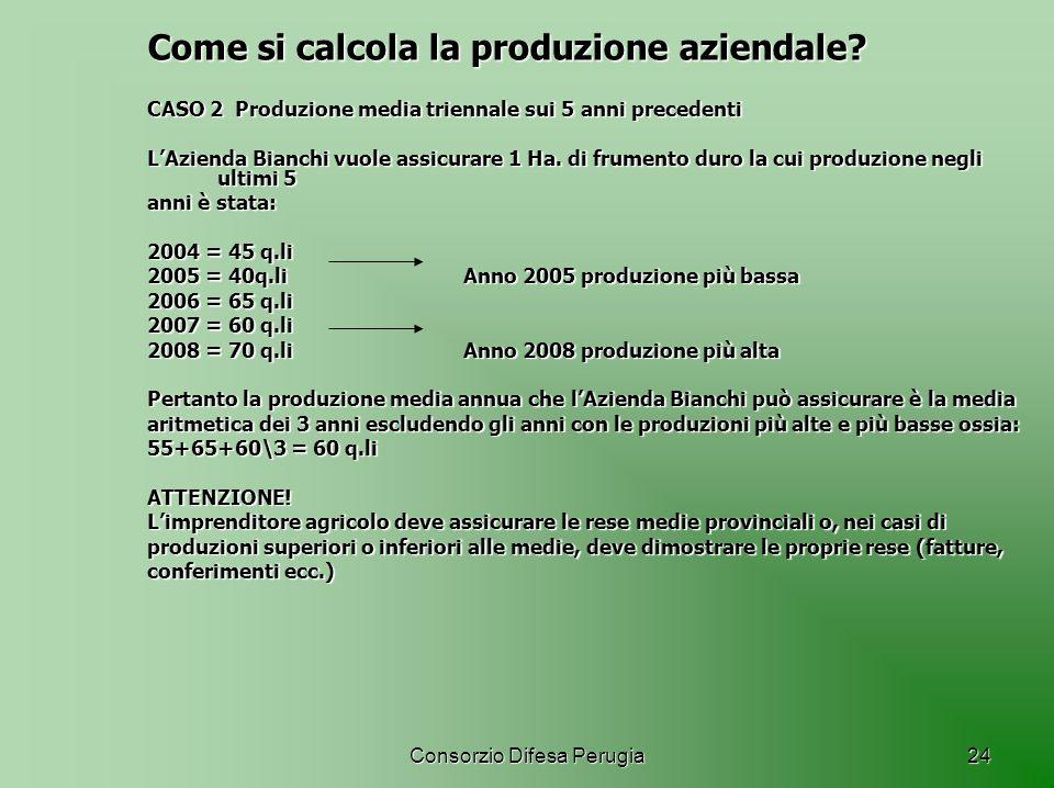 Come si calcola la produzione aziendale