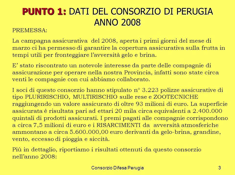 PUNTO 1: DATI DEL CONSORZIO DI PERUGIA ANNO 2008