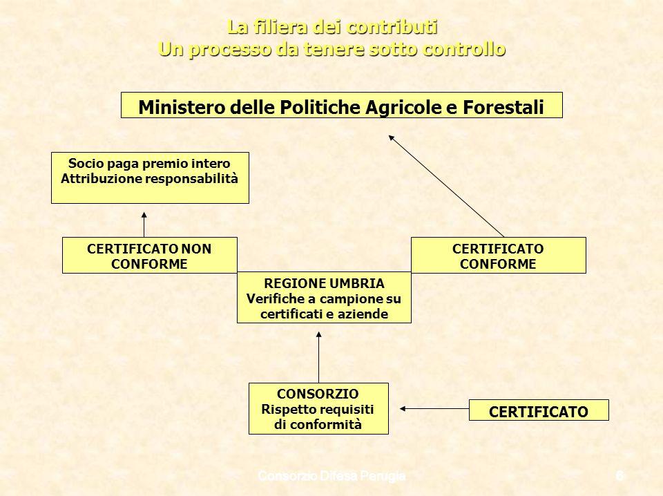 La filiera dei contributi Un processo da tenere sotto controllo