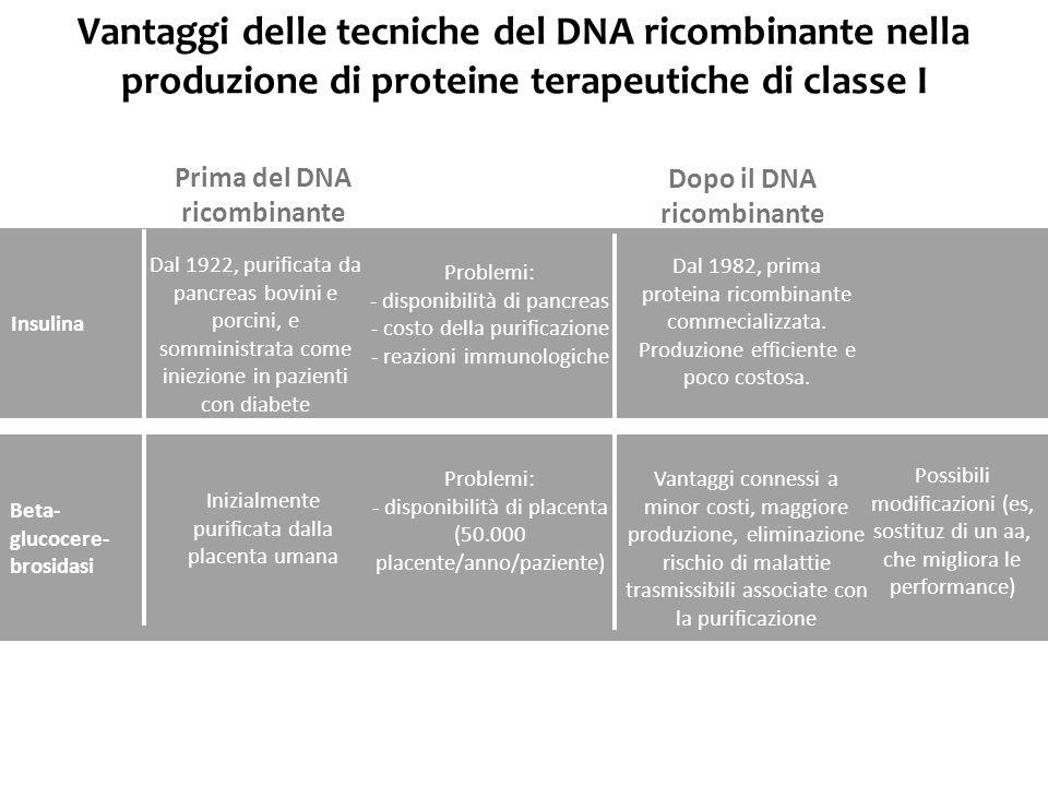 Prima del DNA ricombinante Dopo il DNA ricombinante