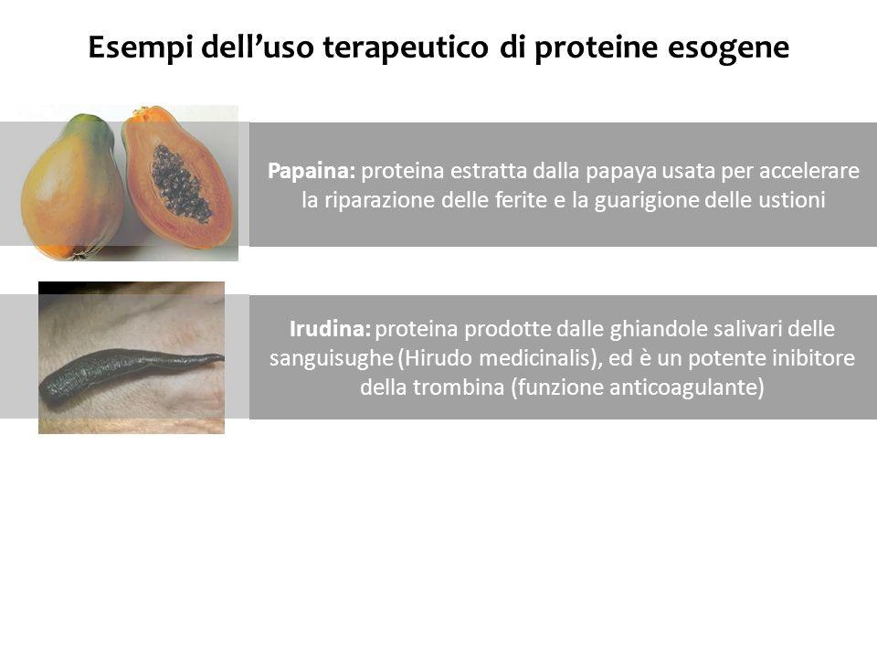 Esempi dell'uso terapeutico di proteine esogene