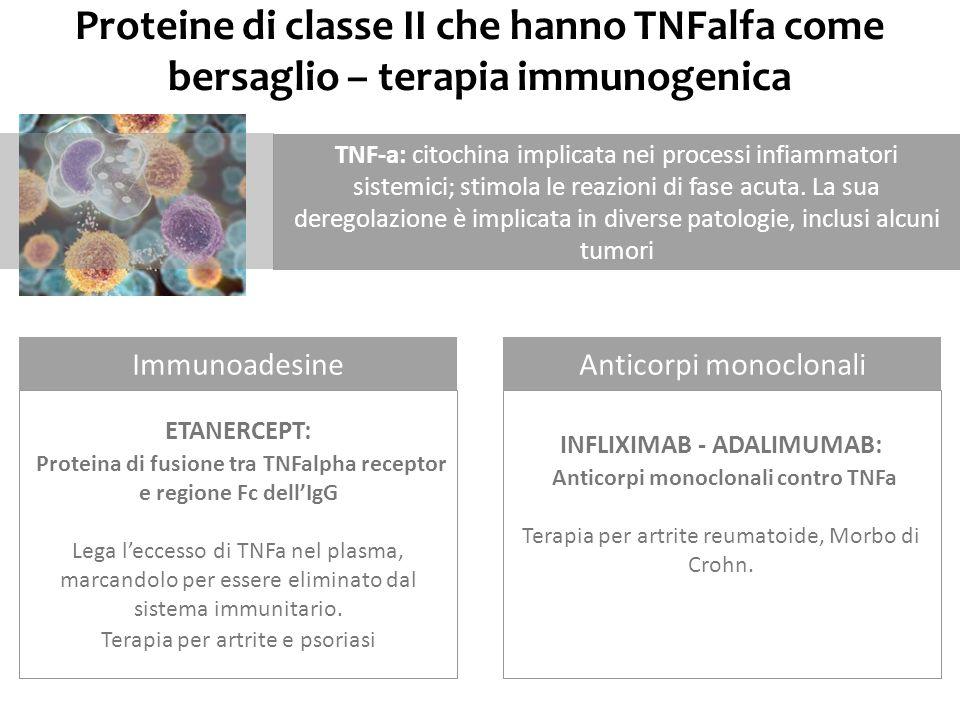 Proteine di classe II che hanno TNFalfa come bersaglio – terapia immunogenica