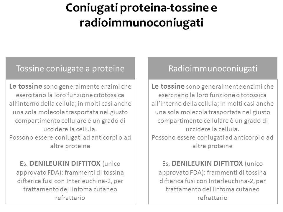 Coniugati proteina-tossine e radioimmunoconiugati