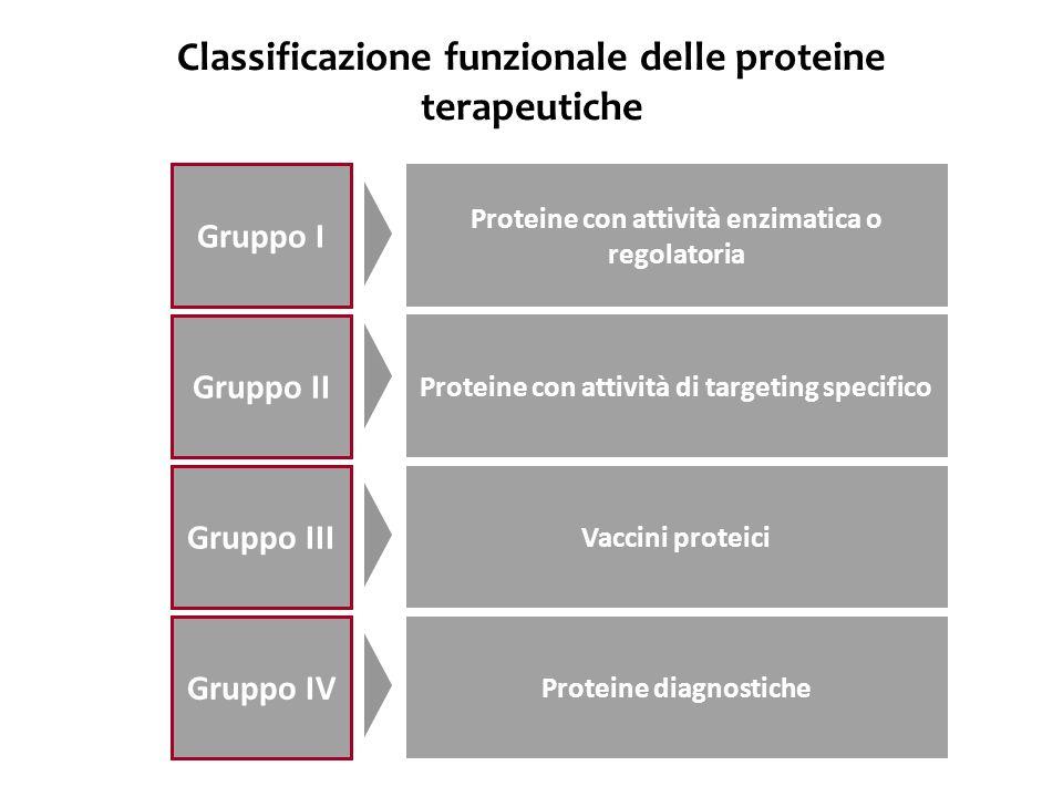 Classificazione funzionale delle proteine terapeutiche