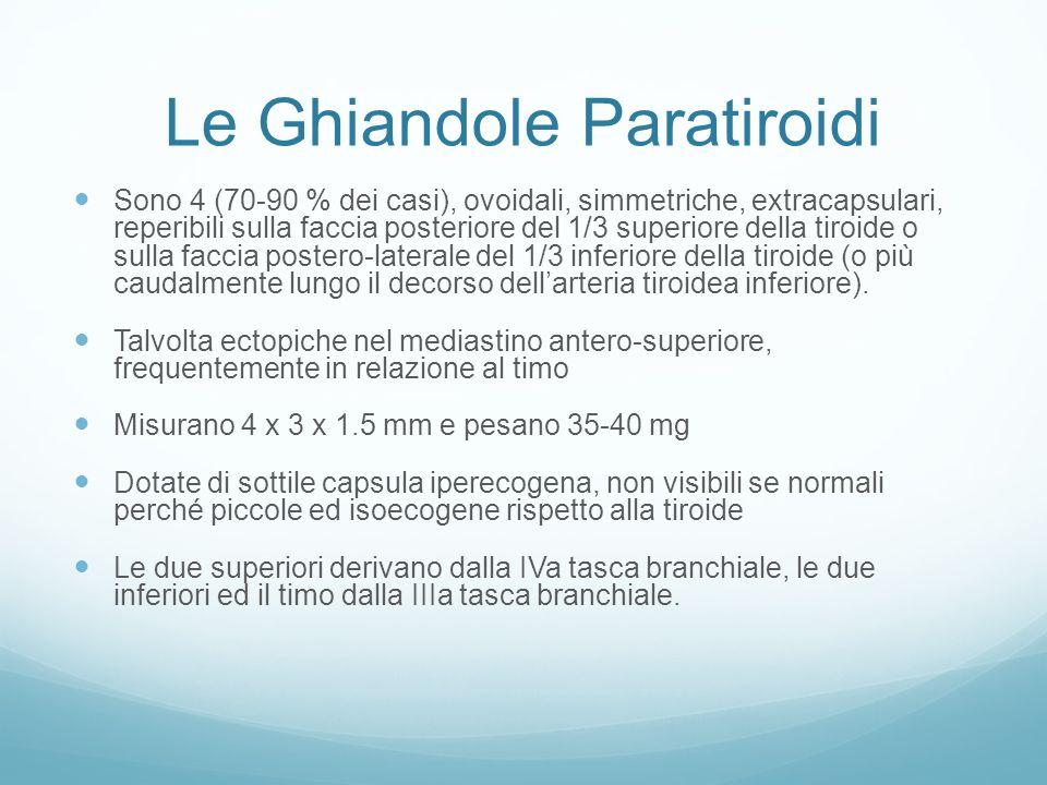 Le Ghiandole Paratiroidi
