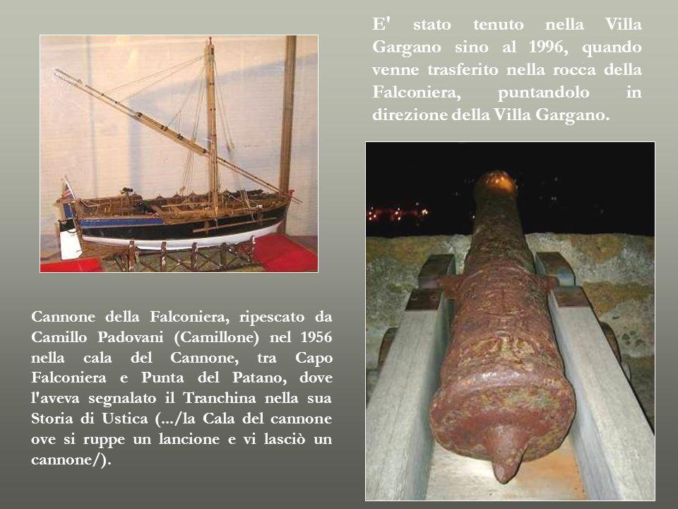 E stato tenuto nella Villa Gargano sino al 1996, quando venne trasferito nella rocca della Falconiera, puntandolo in direzione della Villa Gargano.