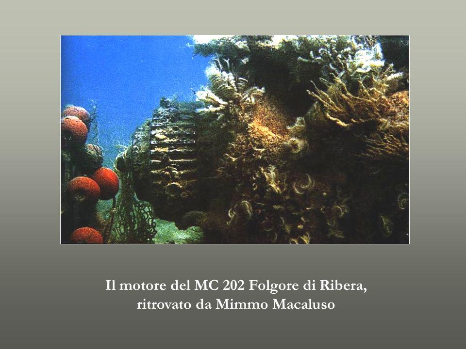 Il motore del MC 202 Folgore di Ribera, ritrovato da Mimmo Macaluso