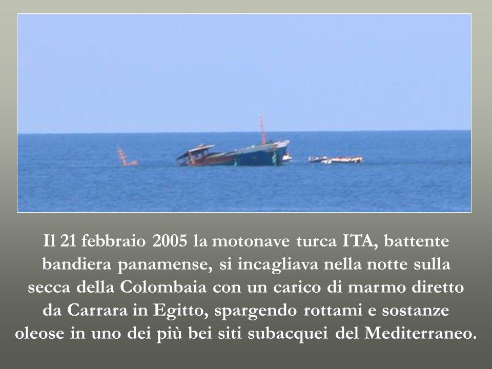 Il 21 febbraio 2005 la motonave turca ITA, battente